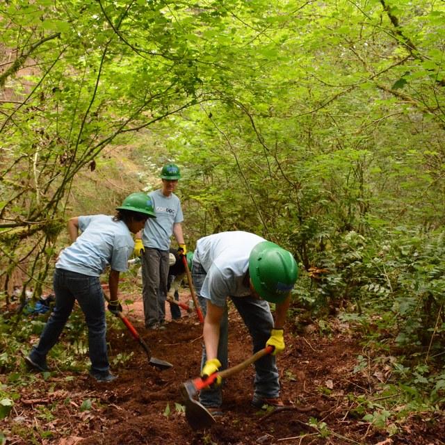 Beaver Lake Preserve Volunteers