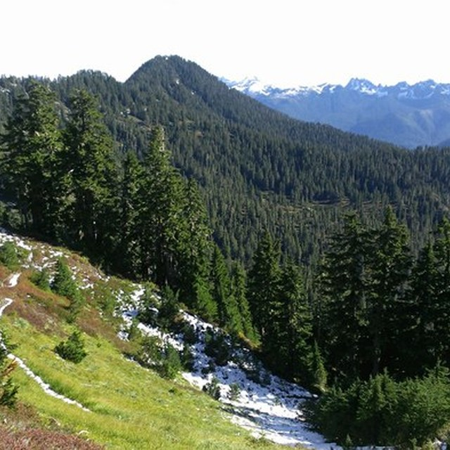 from six ridge pass looking east
