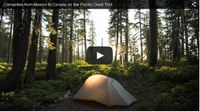 Campsites along the PCT by wanderingthewild